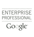 Enterprise professional Google