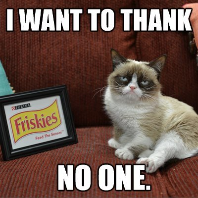 grumpy-cat-friskies-thank-no-one